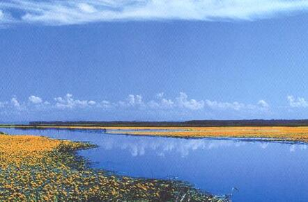 七星河国家级自然保护区湿地保护与生态旅游项目