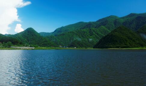 丹江生态长廊观光火车建设项目