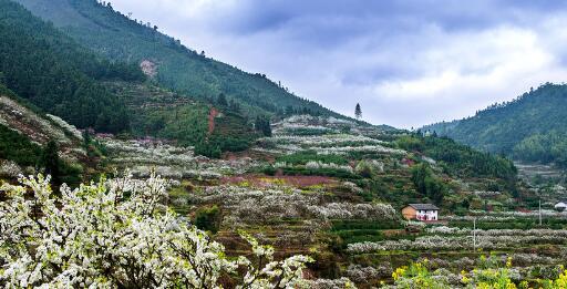 九峰山文化旅游度假区项目