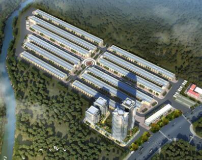 安口镇商贸物流中心建设项目