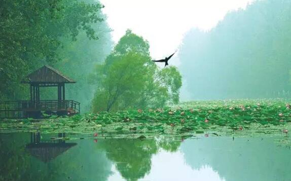 安徽广德桐汭省级湿地公园开发项目