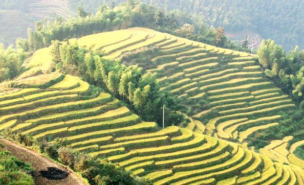 崇义县上堡旅游休闲度假小镇建设项目