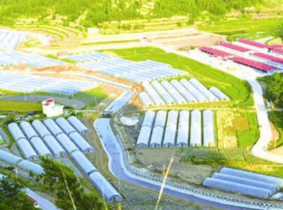 平顶山市东部高效农业示范园项目