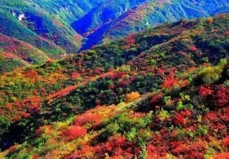 延长县神童生态观光休闲景观带项目