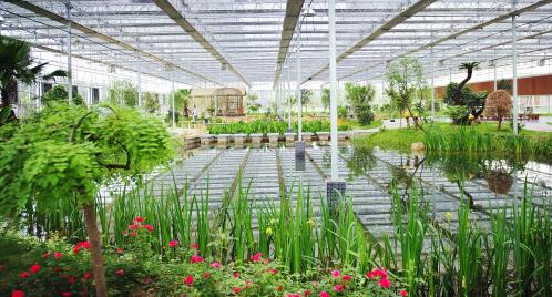 戈壁设施农业示范园项目