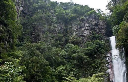 桂林国家森林公园项目