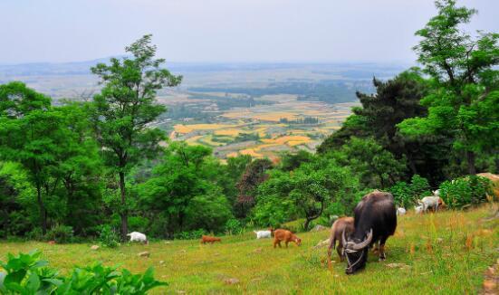 沭河古道风景旅游区项目
