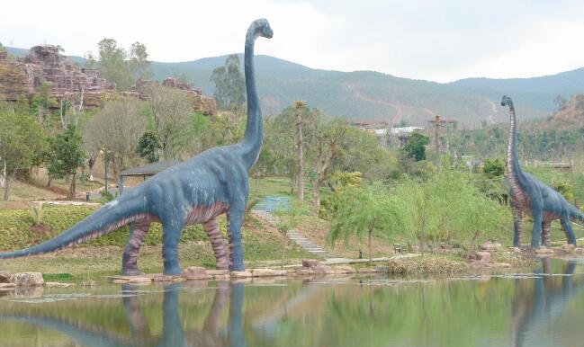 浙江省台州市天台恐龙国家级地质公园