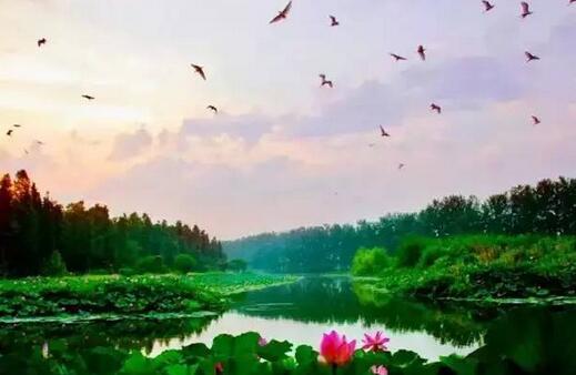 清水潭旅游度假区文化旅游产业园项目
