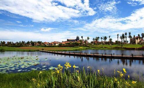 湿地公园旅游观光项目
