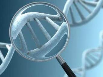 玉溪高新区细胞库及基因检测中心项目