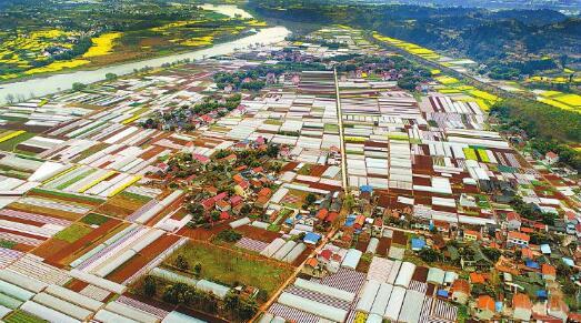 资阳市安岳县国家现代农业示范区(核心区)建设项目