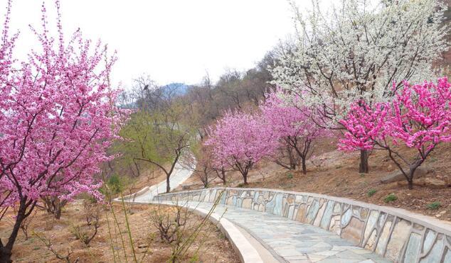 通海县西山公园旅游开发项目