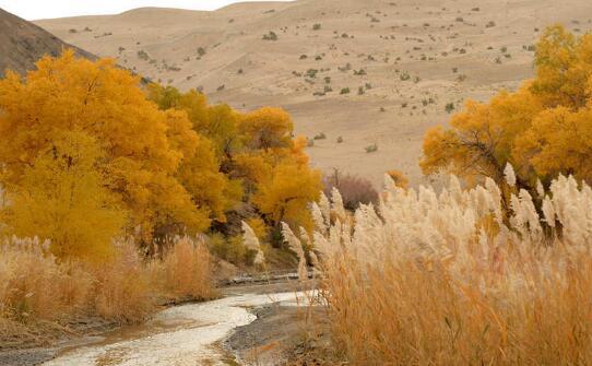 阿克塞库姆塔格国家沙漠公园