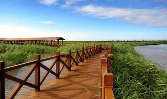 霸王潮国家湿地公园项目